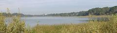 Lake Merced (pc110004p)