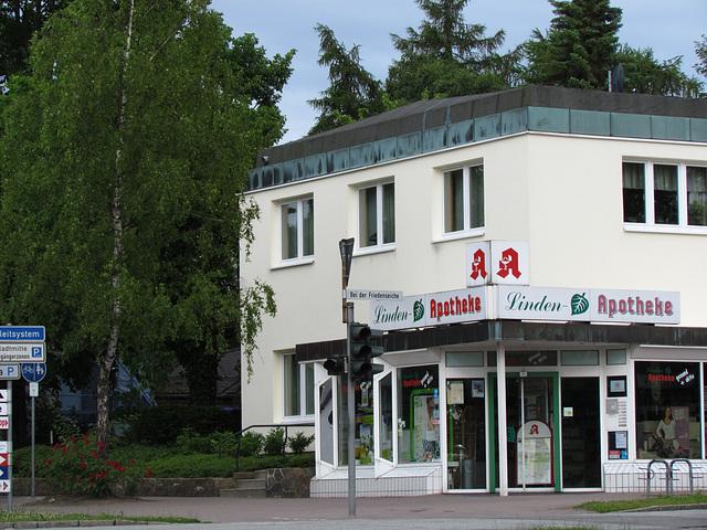 Die Birke vor der Linden-Apotheke bei der Friedenseiche...