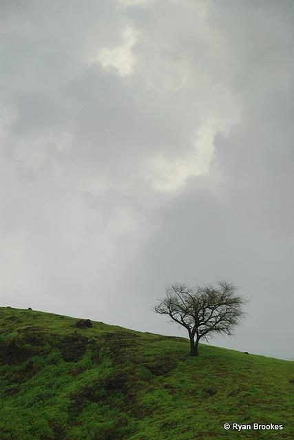 20080711-0105
