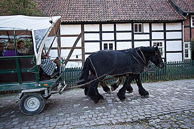 20121008 1566RWw Kutschfahrt