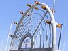 Gate (p9060574)