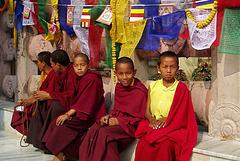 Petits moines à l'intérieur du cercle de déambulation (Temple de Mahabodhi) (Bodh-Gaya, Bihar, Inde)