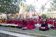Moines (Temple de Mahabodhi) (Bodh-Gaya, Bihar, Inde)