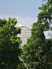 syon park, isleworth, london