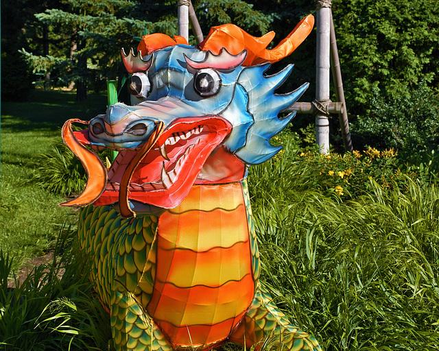 Paper Dragon – Botanical Garden, Montréal, Québec