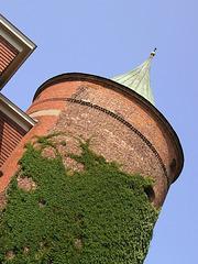 Riga (p7191600)