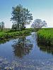 Nederland - Blokzijl, De Wieden