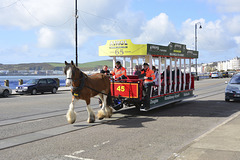 Isle of Man 2013 – Ian pulling the tram