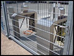 Elektronisches Einlass-System am Millerntor-Stadion