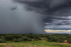 A Half Rain