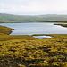 Macquarie Island 1968: Plateau Lakes