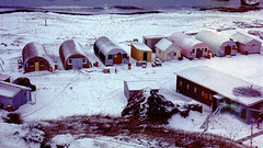 Macquarie Island 1968:  The main station area
