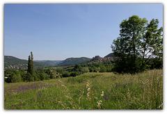 Paysage campagnard- Haute-Loire (2)