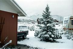 02-snow_ig_trim_adj