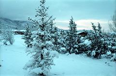 04-snow@house_ig_adj