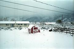 06-barn_in_snow_ig_adj