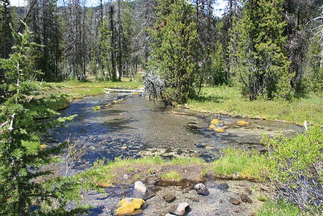 Tyee Creek