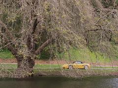Mallard Lake (p2255728)