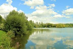 reflexion sur l'étang
