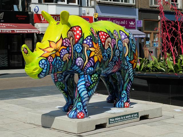 Go! Rhinos_003 - 14 July 2013