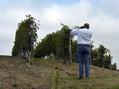 vinum nobis