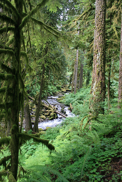 Multnomah Creek