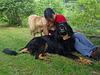 Lilou, Sirius et moi