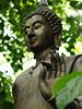 Buddha (p3279374)