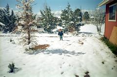 10-snowy_frnt_yd_ig_adj