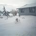 06-snowy_frnt_yd_ig