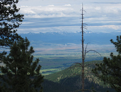 Anthony Lake, OR 0937a