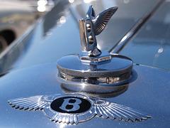 Bentley (p4279765)