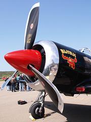 Yak-11 (p4261393)