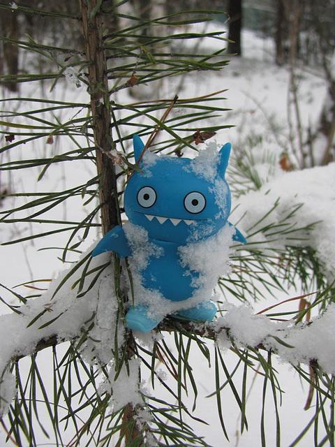 Snow bat
