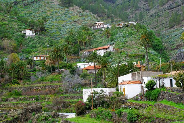 Der Ort La Laja befindet sich, eingerahmt von eindrucksvollen Berghängen, etwas östlich des Garajonay-Nationalparks in der Schlucht Barranco      de las Lajas auf etwa 500 Metern Höhe. ©UdoSm