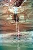 3-14-ladder@deer_ck_ig2