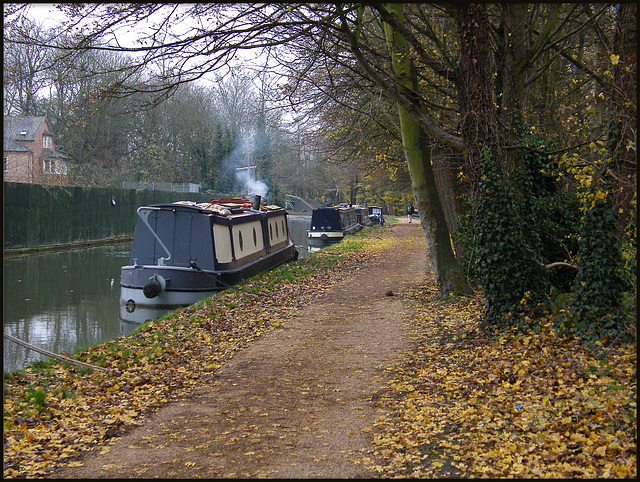 towpath in November