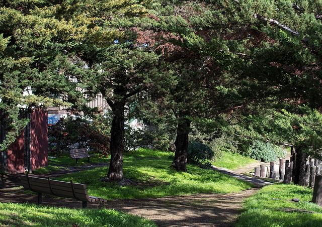SF waterfront Islais Creek Tulare Park (0201)