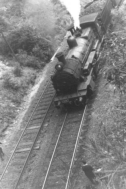 196610 tour 5597 Sydney - Kiama0003