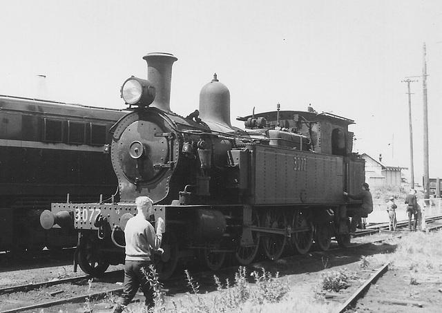 196610 tour 5597 Sydney - Kiama0005