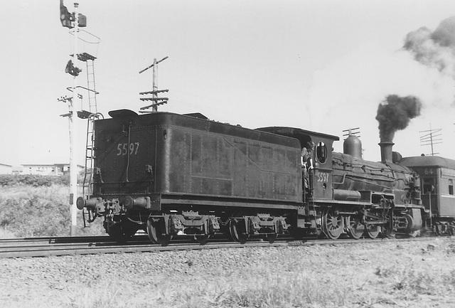 196610 tour 5597 Sydney - Kiama0016
