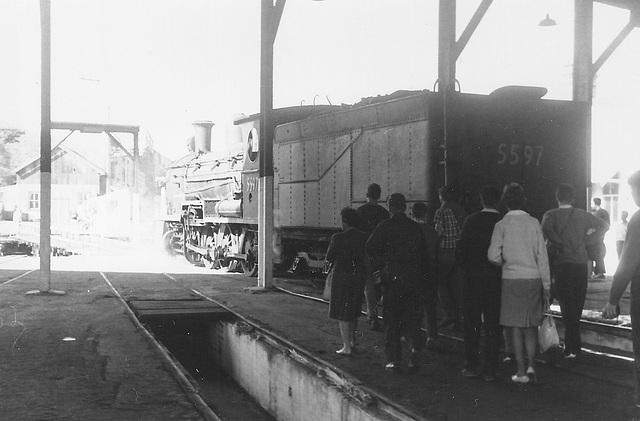 196610 tour 5597 Sydney - Kiama0018