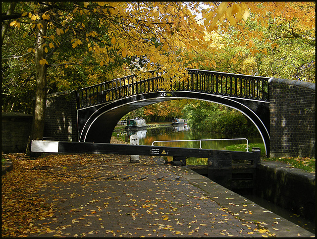 autumn leaves at Isis Bridge