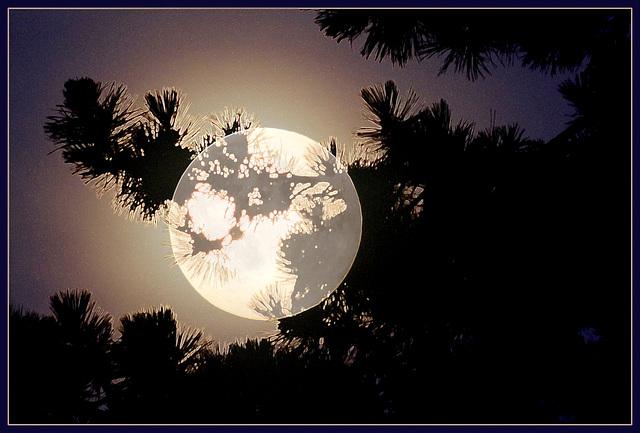 Au clair de la lune.....