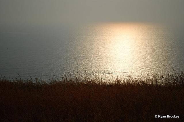 20081029-0341