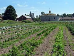 Gardens & Round Stone Barn