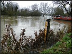 high water at Cripley