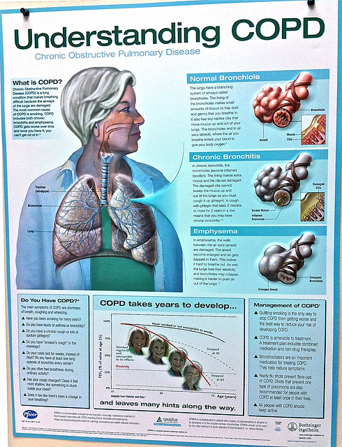 Understanding COPD (Chronic Obstructive Pulmonary Disease)