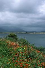 Clifden, Connemara, Co. Galway
