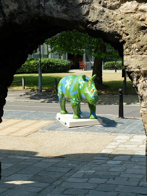 Go! Rhinos_005 - 14 July 2013